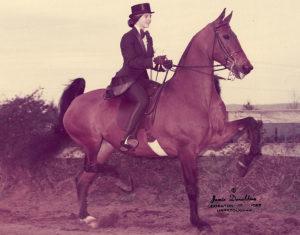 kim-love-stump-horse